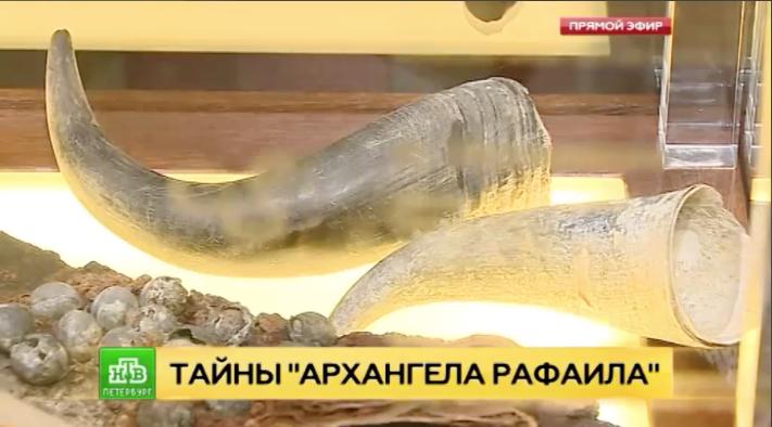 В РГО представили выставку контрабанды с корабля петровских времен